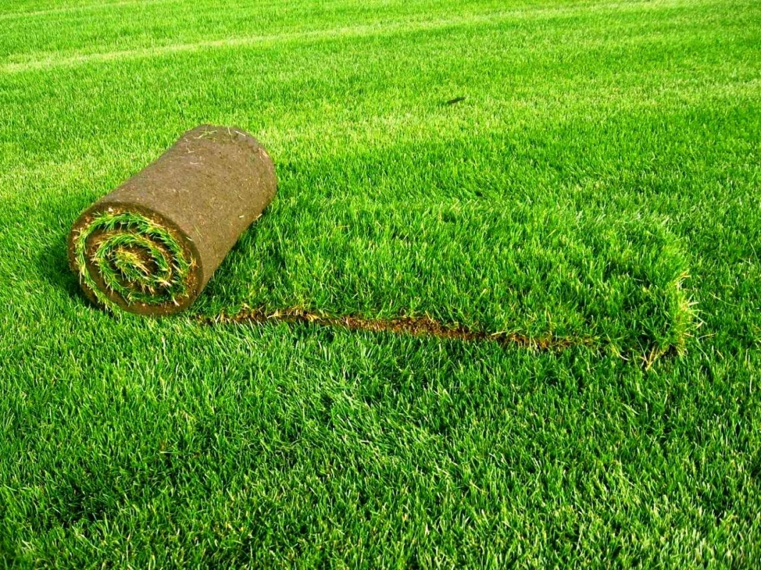 Искусственная трава для декора